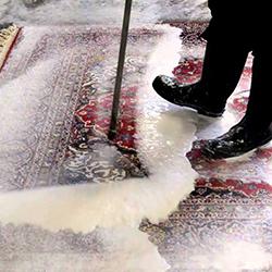 قالیشویی شهر ساری