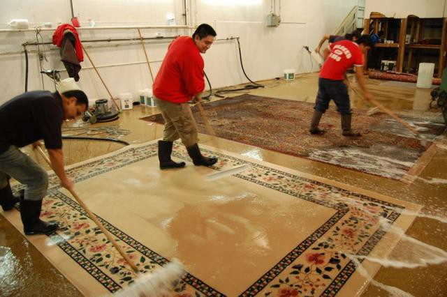 قالیشویی نگین ساری